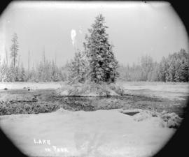 [Beaver Lake in Stanley Park, partially frozen and covered in snow]