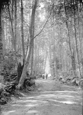 [Man and woman on road through forest to Lake Killarney, Bowen Island]