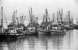 [Fishing boats in Vancouver Harbour]