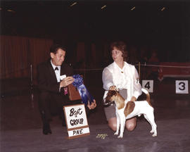 Best in Group award [Terrier Group: Fox Terrier] being presented at 1974 P.N.E. All-Breed Dog Show