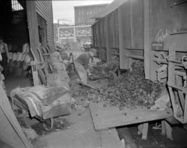[Men shovelling coal from a railway car at Evans, Coleman, and Evans Ltd.]