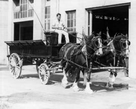 Team of two horses pulling wagon