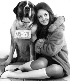St. Bernard dog and model advertising auto license tags made by T.B. Vets Association
