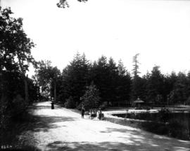 [Beacon Hill Park, driveway, pond and summer house]