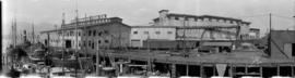 [New England Fish Company and Canadian Fishing Company buildings and dock]