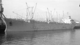 M.S. Hoegh Musketeer [at dock]