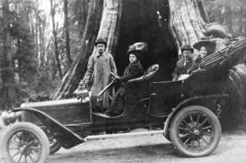 [A six-cylinder Ford in front of the Hollow Tree]