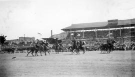 R.C.M.P. musical ride at the Exhibition grounds