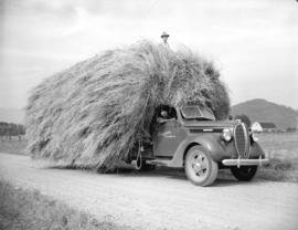 Load of hay on truck