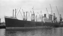 M.S. Raki [at dock]