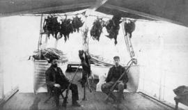 [Two men on boat with hunting rifles, a string of birds, and a coyote strung up by its hind legs]