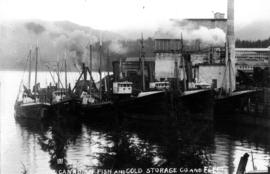 Canadian Fish & Cold Storage Company and fleet