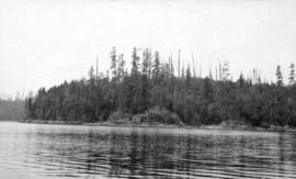 [View of the shore of Bedwell Bay]