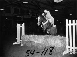 Horse and young rider in costume jumping fence during show in Livestock building