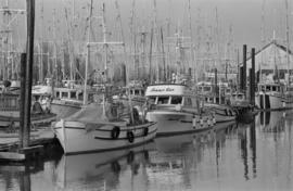 Fishboats, Steveston