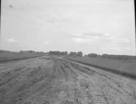 Road to Beet Storage Grounds, looking East