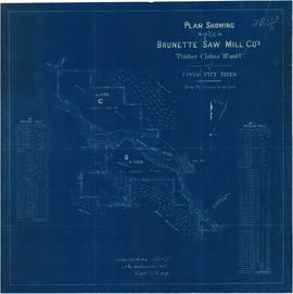 "Plan showing the Brunette Saw Mill Co's timber claims ""B"" and ""C"" on upp..."