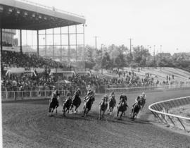 Horse race at Exhibition Park