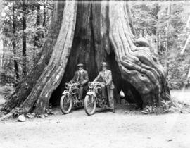 James Crookall [and friend H. Morris] on motorcycles in Big [Hollow] Tree