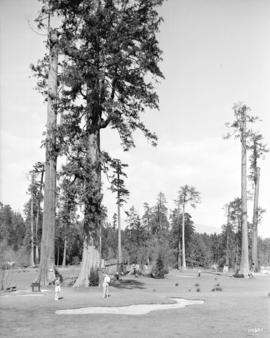 [Putting green at the foot of Nelson Street in Stanley Park]