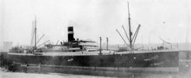 [Unidentified steam ship at dock]