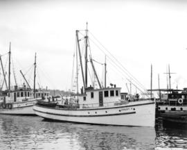 """Violet P"" fish boat, photo taken for Mitchell Pilotage Co."