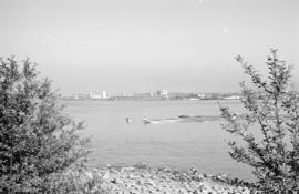 [View of the eastern waterfront from Stanley Park]