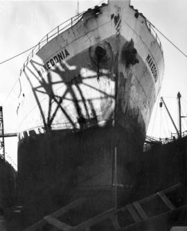 "[Bow of ""Makedonia"" while in dry dock]"