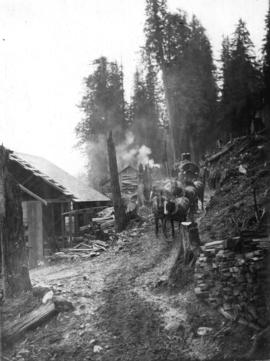 [A team of horses at Buntzen Lake Dam construction site]