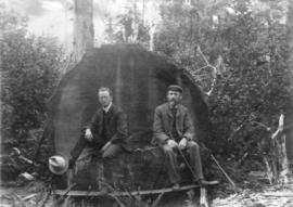 [John Barrow and John Reid sitting on a stump]