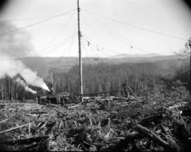 [View of a logging operation]