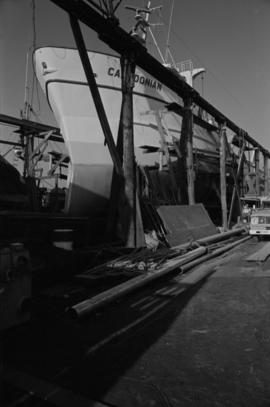 Fitting out [Caledonian, large ship in dry dock being repaired]
