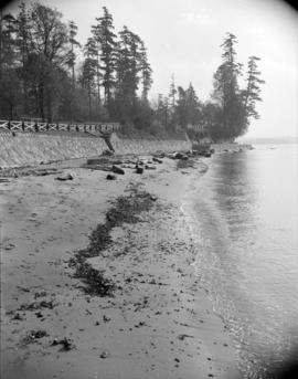[View of a beach and part of the sea wall at Stanley Park]