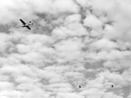 [Three Catalina Patrol Bombers on test flight]
