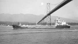 M.S. Imperial Skeena [passing under Lions Gate Bridge]