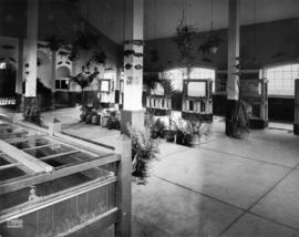 Fisheries bldg, 1919 : [interior]