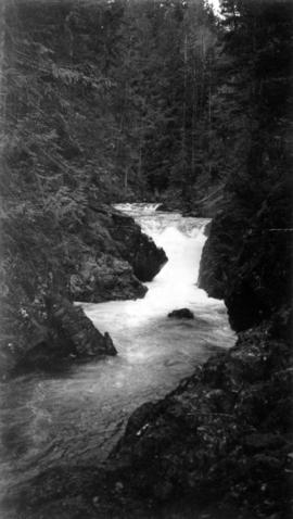 A river near Little Qualicum Falls
