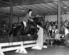 Show jumping in 1955 P.N.E. Horse Show