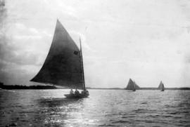 [Unidentified sailboats on water]