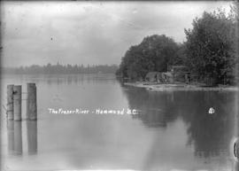 The Fraser River - Hammond, B.C.