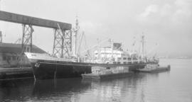M.S. Agostino Bertani [at dock]