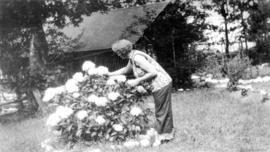 [Woman tending flowering bush at George J. Fowler's summer home]