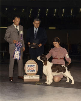 Dog Show Committee Chairman J.L. Gray and judge presenting Best Canadian Bred Puppy award in 1973...