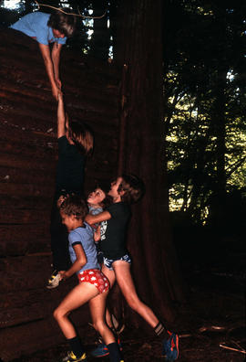 Children climbing wooden wall at Camp Capilano