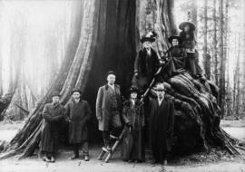 Group of people posed on and around the Hollow Tree in Stanley Park