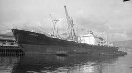 M.S. Ussurijsk [at dock, with barges alongside]