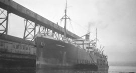 S.S. Glenmorganshire [at Canadian Government elevator dock]