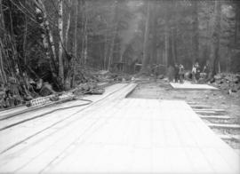 [Road construction in forest]