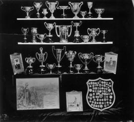 Display of Archie McDiarmid's trophies and certificate of participation in 1920 Olympic games