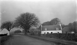 Country road with farm house, Ayr